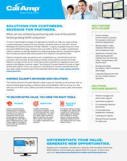 CalAmp Solutions Provider Network