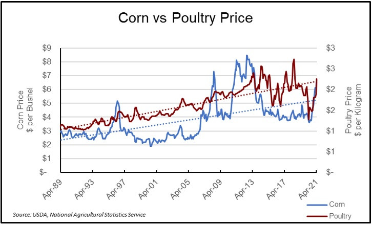 Focus Management Group - poultry and corn