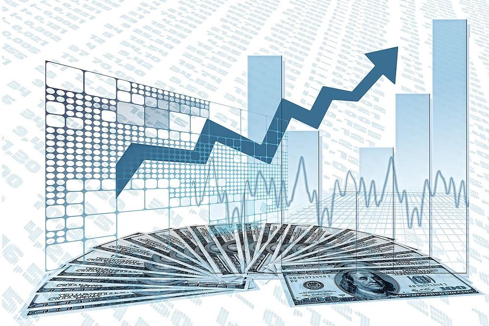 Focus Management Group market trends