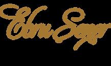 Logo_P2_L3B-ALTIN1.png