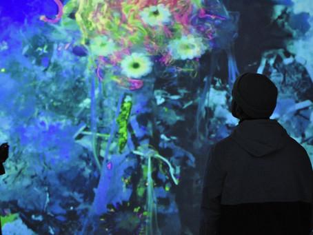 迄今最大型的數位藝術博覽會今年將在巴黎舉辦