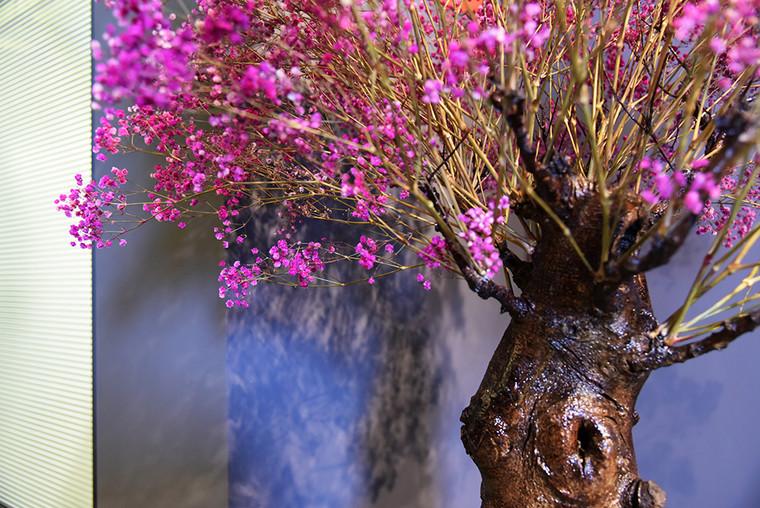 Tartare_Visavis - pink tree_zoomin2.JPG