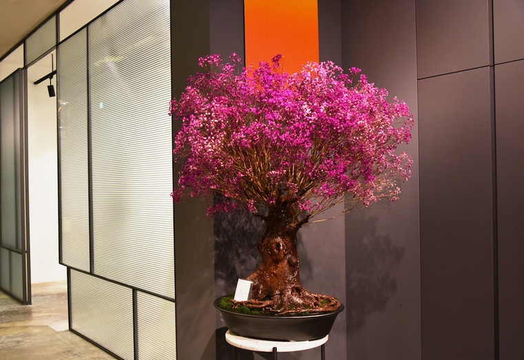 Tartare_Visavis - pink tree_h1.JPG
