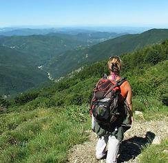 Sopralluogo Monte Chiappo 2014.JPG