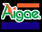 AIGAE_LOGO_GUIDE_ASSOCIATE_RIDOTTO.png