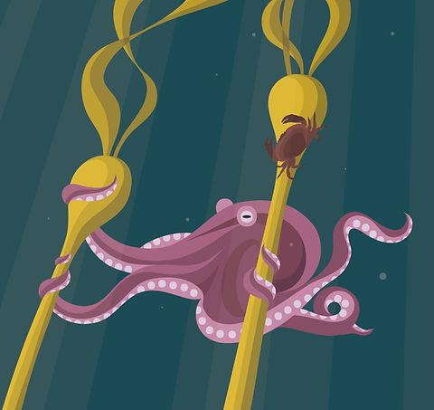 octopus-01.jpg