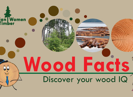 Join Cookie and Spruce and discover your Wood IQ!