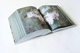Елизавета Коновалова - дневник реки Инн