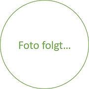 Fofo.jpg