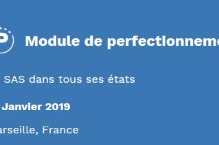 Formation : module de perfectionnement - le SAS dans tous ses états - 31 janvier 2019 - Marseille
