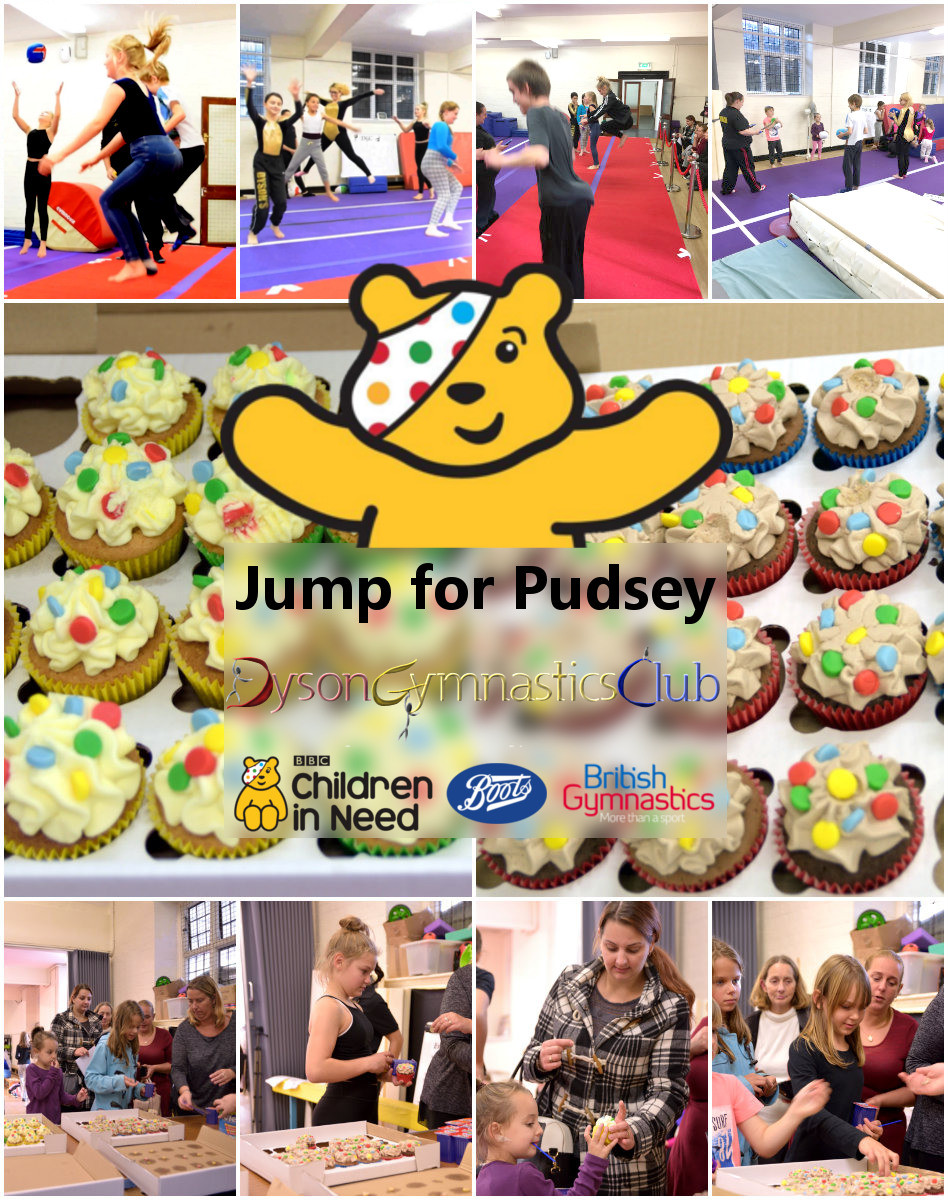 Jump for Pudsey
