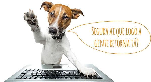 pet-shop-obrigado.jpg