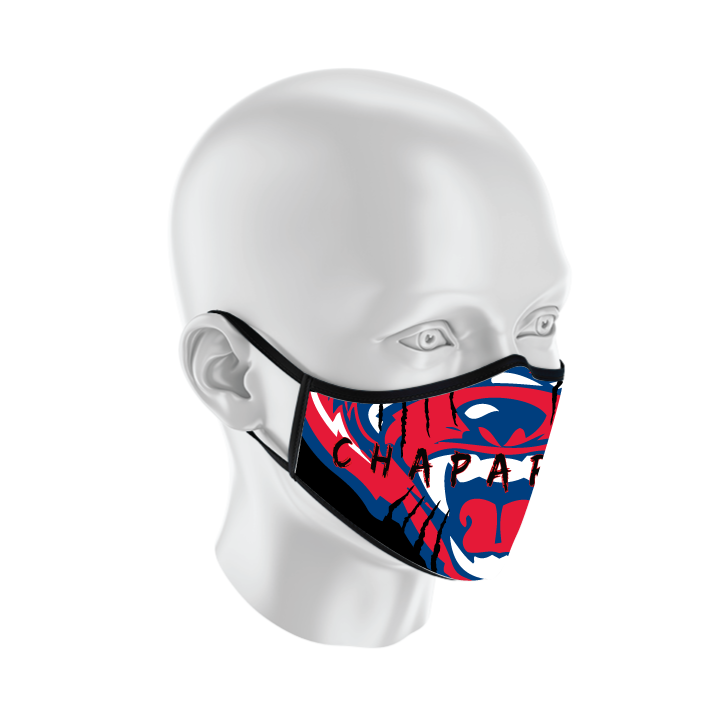 MSK-2019_mask