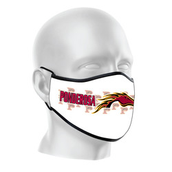 MSK-2009_mask