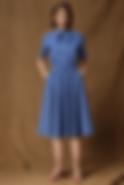 Bagutta Dress Blue.png