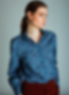 Robert Friedman Blue Print Shirt.png
