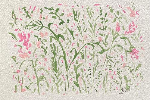 Wildflowers no.4