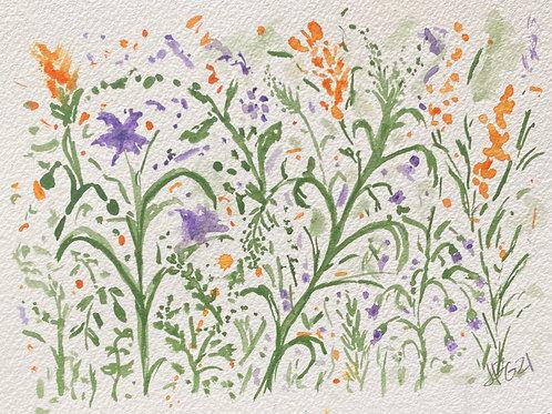 Wildflowers no.5