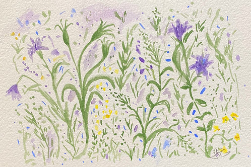 Wildflowers no.6