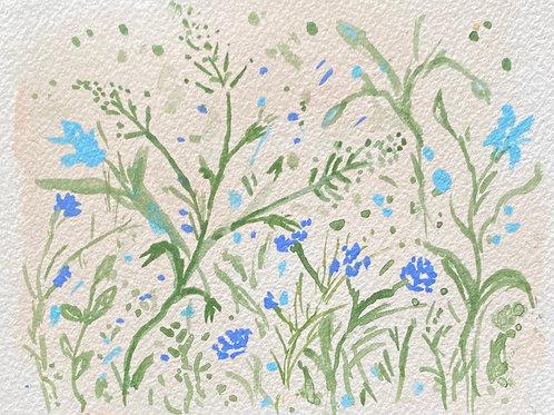 Wildflowers no.9