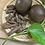 Thumbnail: Homemade Luo Han Guo Herbal Drink