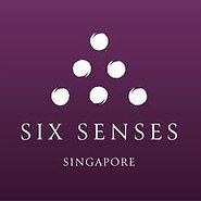 six senses.jpg