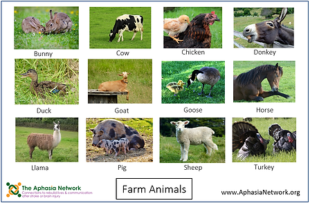 The Aphasia Network: Supported Communication Tools, ahasia resources, animal list for communication book