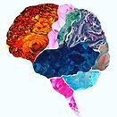 Kaileys Brain.jpg