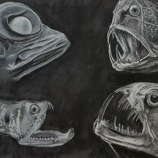 Four deep fish