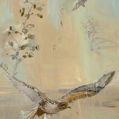 FERRUGINOUS HAWK by Nicola Marshall 48 x