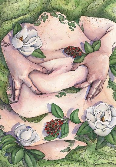 Soft Magnolias