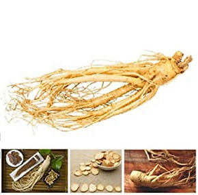 ginseng and example graphic.PNG