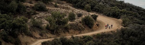 fahrrad beratung pedeölec ebike spedelec welches fahrrad mountainbike trekking city