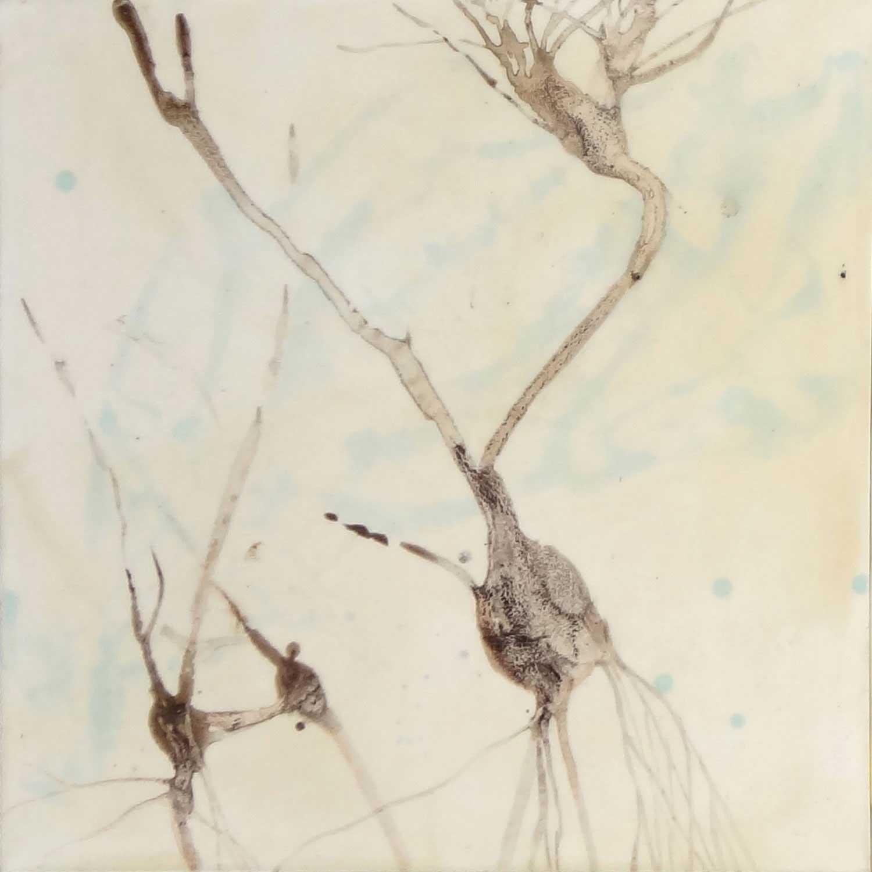 Neuron 1