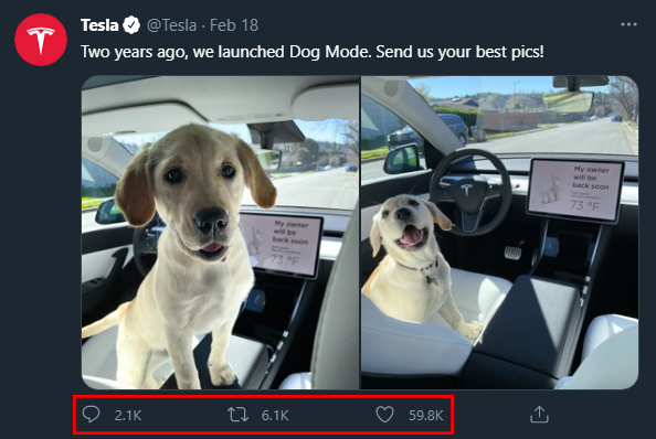 Annotated screenshot of a Twitter post made by Tesla with a white puppy in the front seat of a Tesla vehicle
