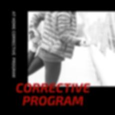 Corrective Program.png