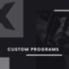 Custom Program.png