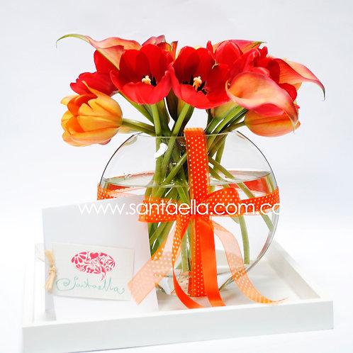 Tulipanes y Calas