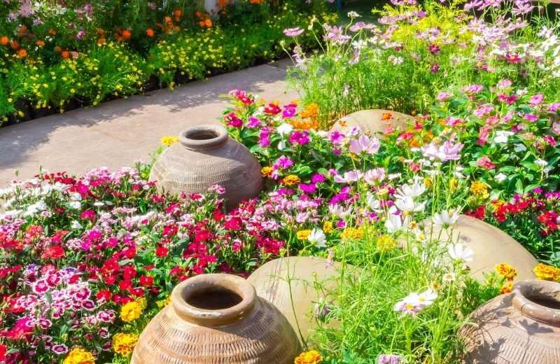 coastal home garden