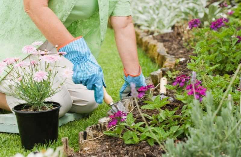 vero beach gardening