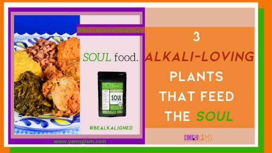 Soul Food HBN Blog Post