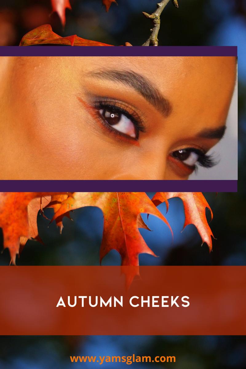 Autumn Blush Cheek Makeup