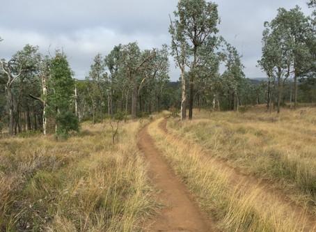 Yarraman- Nanango- Kingaroy Rail Trail Link Route