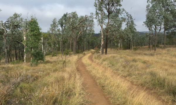 The route down to Yarraman Creek