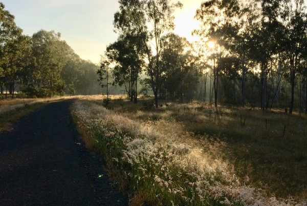 Early morning between Wondai and Murgon