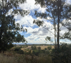 View from near the top of Mt Stanley Rd