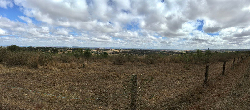 Looking west towards Kingaroy