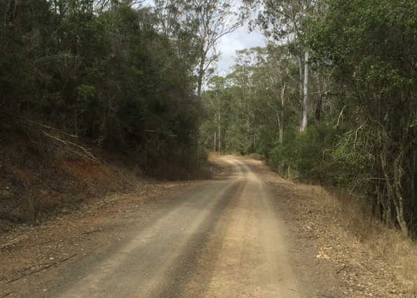 Forestry roads