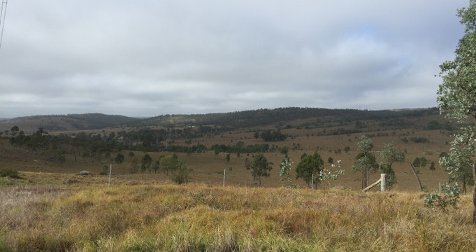 Views out of Yarraman