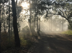 Early morning on NAN1